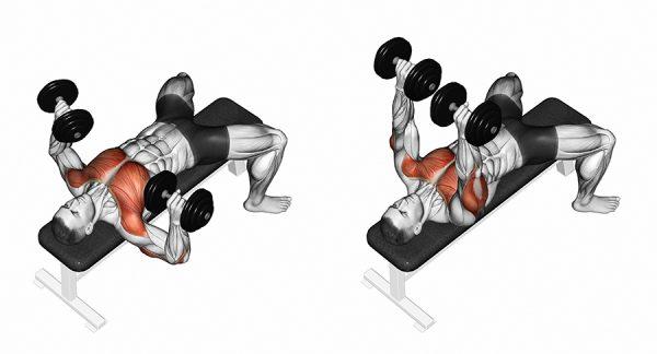 ejercicios de mancuernas para pecho