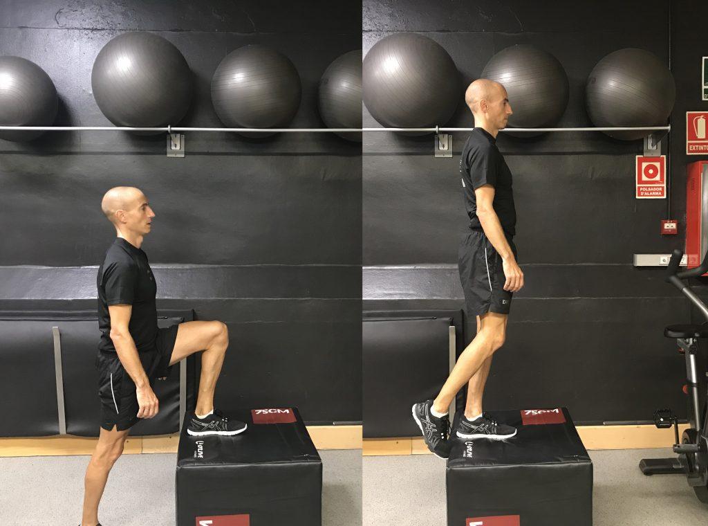 ejercicios piernas step up