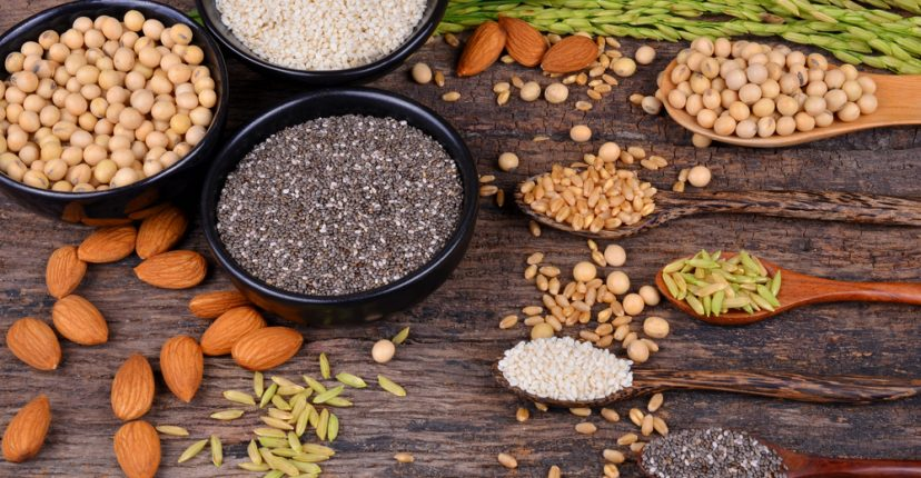 foods rich plant protein