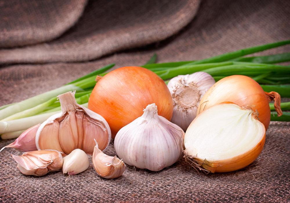 cebolla y ajos alimentos para mantenerte joven