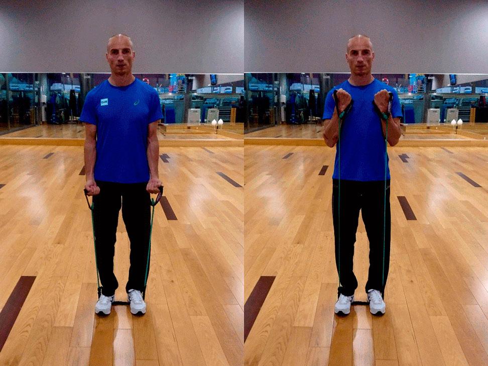 exercici curl de bíceps